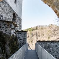 Archeonorico_Altburg (1)